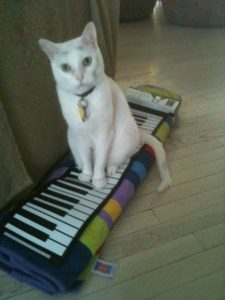 Finn after his keyboard lesson